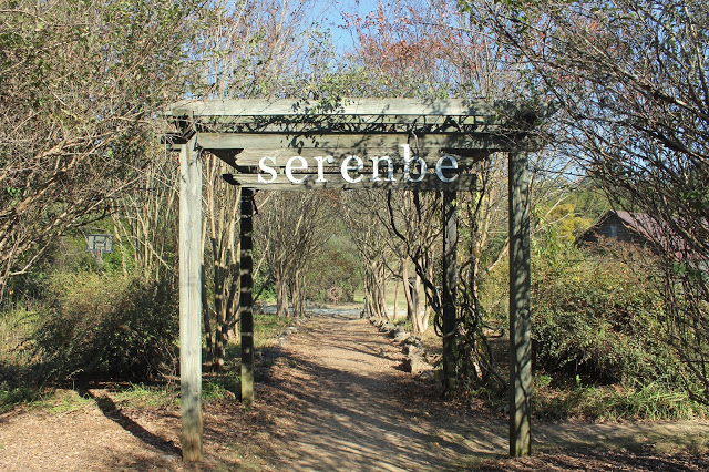 a spooky trip to serenbe